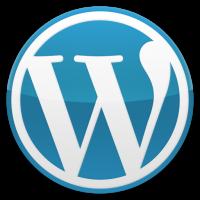 【WordPress】【AMP】【Lion Media】とりあえず即効でAMP関連のエラーを消す